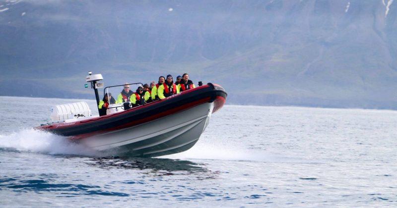 Le Rhib, bateau semi-rigide d'Artic Sea Tours