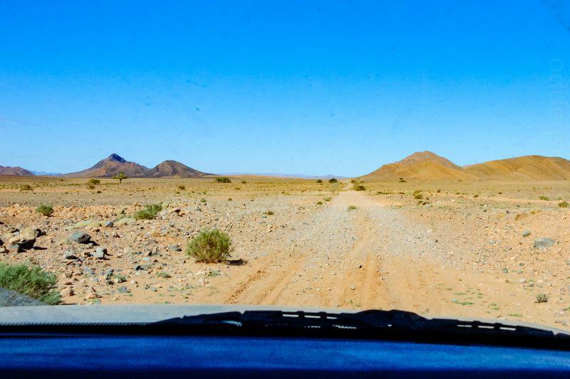 La route? Là où l'on va, on n'a pas besoin de route!