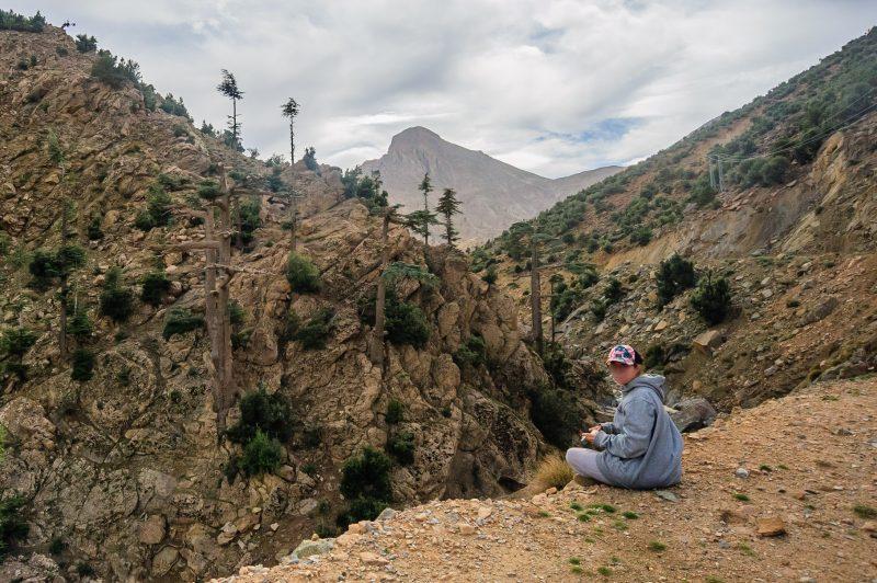 Tout ça intrigue bien Némo, qui observe les arbres en fumant une tige.